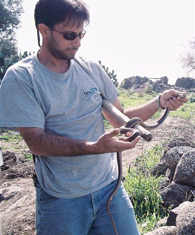 אבנר סליטרניק בטיול ג'יפים מצא נחש הראה אותו למטיילים והחזירו לטבע