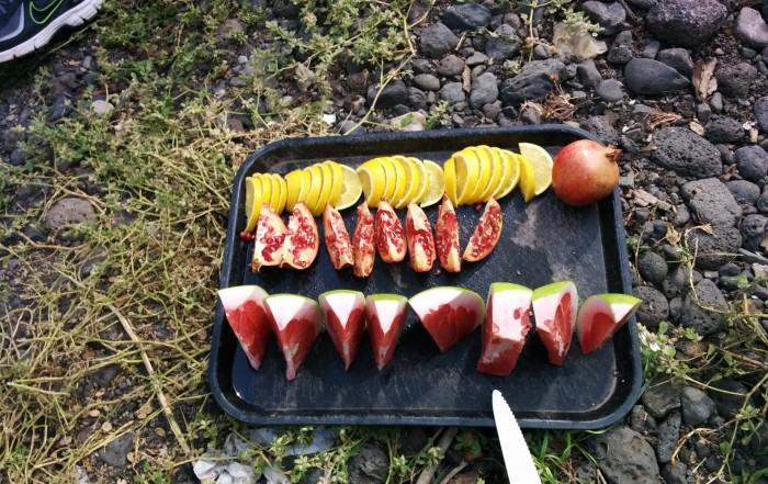 פירות טעימים מהבוסטנים סביב בטיולי הג'יפים של פלגי בזלת