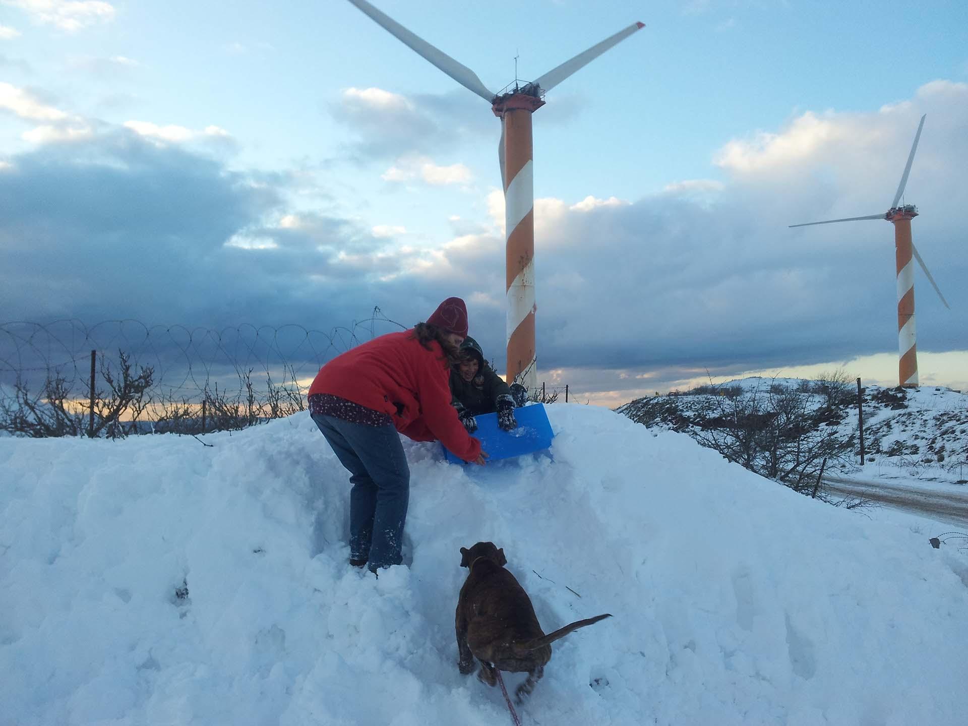 טיולי משפחות בחורף לפסגות מושלגות בג'יפים של פלגי בזלת