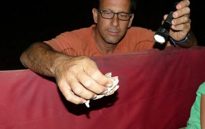 זיקית בצבעי הסוואה בטיולי שקיעה למשפחות בג'יפ של פלגי בזלת