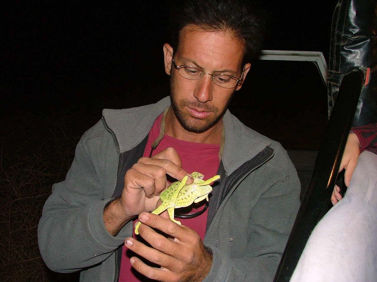 אבנר המדריך מחזיק זיקית באירוע פרטי בספארי לילה פלגי בזלת