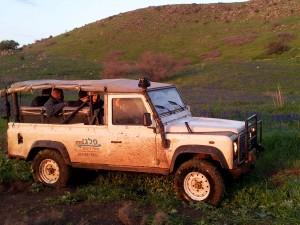 טיולי ג׳יפים דרום רמת הגולן פלגי בזלת