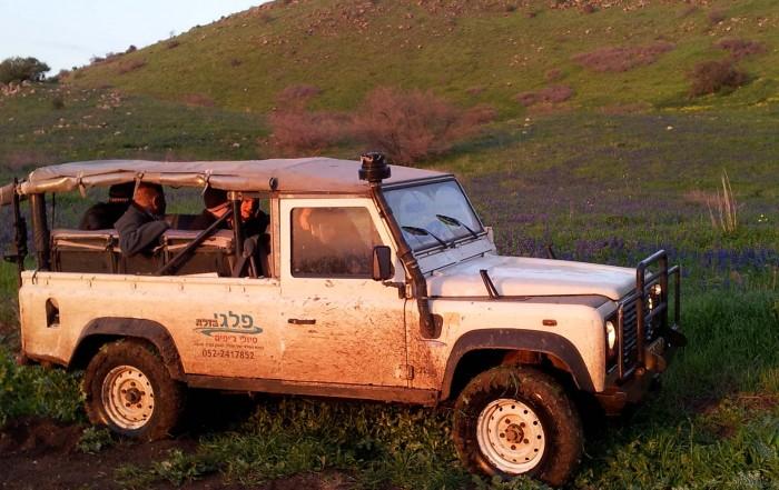 טיולי פריחה לאירועים פרטיים בג׳יפים של פלגי בזלת