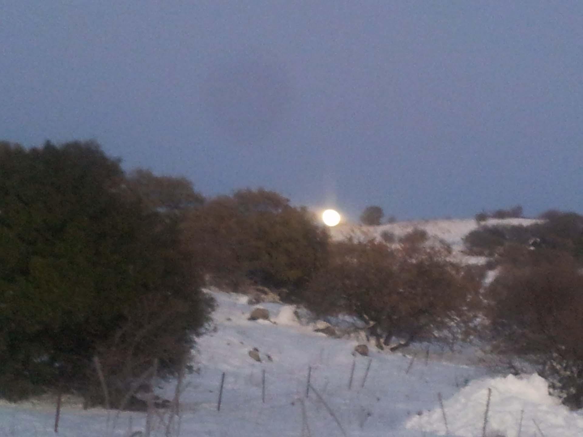 זריחת הירח בצפון רמת הגולן המושלג בג׳פ של פלגי בזלת