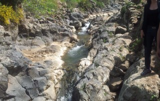 A day trip to meshoshim nature reserve palgei bazelet
